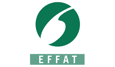 article-effat.png
