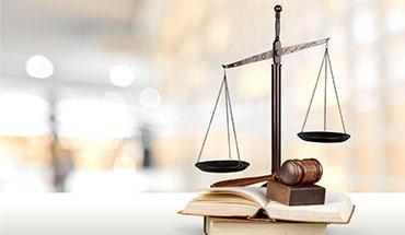 artikel-grondwettelijk-hof.jpg