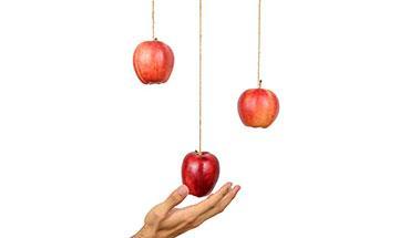 artikel-laaghangend-fruit.jpg